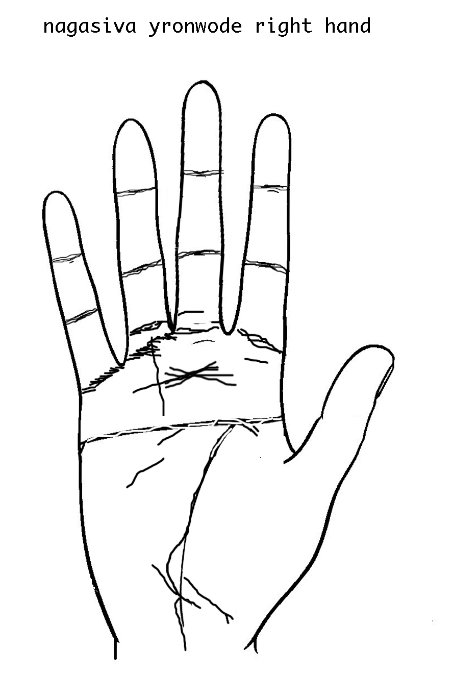 Simian line palmistry tony blair tony bliar - My Left Hand Is Trying Very Hard To Be Another Masukake With Its Heart Emotion Line Being Captured By The Head Intellect Lineat The Extreme Left Between